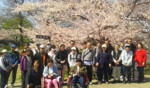 桜の前での集合写真